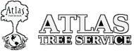 Atlas Tree Service Salt Lake City Utah